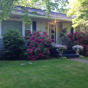 Sunny South end Halifax two bedroom home close to universities