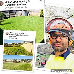 Lawn Mowing Plus more