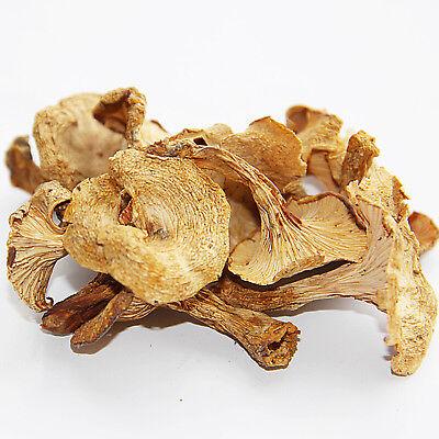 Dried Yellow Wild Chanterelle Mushrooms CantharellusMushroom