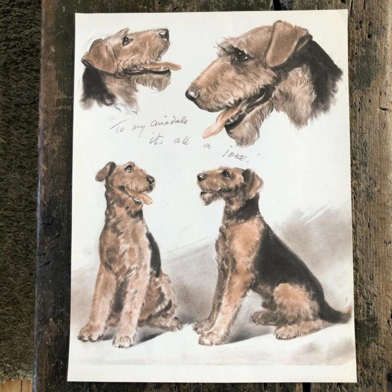 Vtg Airedale Dog Print