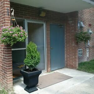 Tillsonburg- 2 BEDROOM APARTMENT AVAILABLE