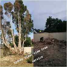CALL THE GUYS FROM SYDNEY CLEAR VIEW TREE SERV FOR A FREE QUOTE!! Sydney City Inner Sydney Preview