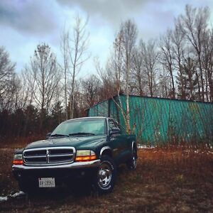 1999 Dodge Dakota 2wd v6