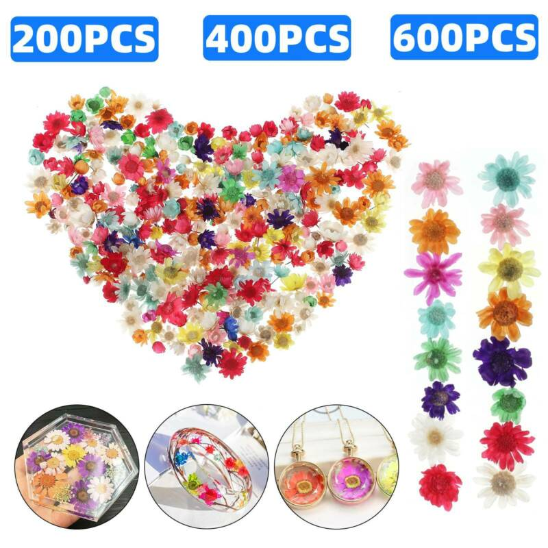 Real Dried Flowers For DIY Art Craft Epoxy Resin Candle Making Jewelry Glass Kit
