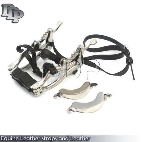 Equine Dental Superior full Mouth Speculum with Leather straps and Leather plate