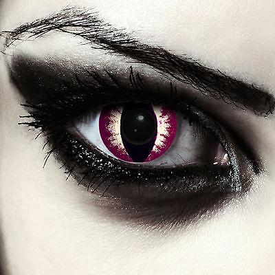 Lenti a contatto scure occhi di gatto viola per Halloween: