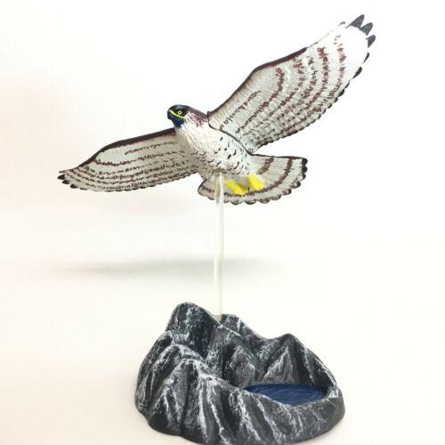 Epoch Capsule Collection Eagle Hawk Mini Figure Northern Goshawk import Japan