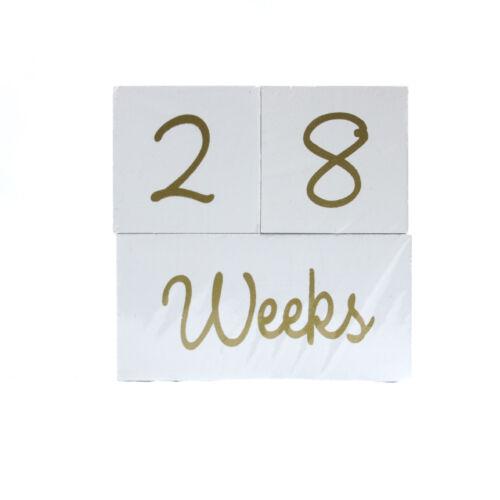 Baby Milestone Blocks Photo Shoot Days Months Years shower gift white gold