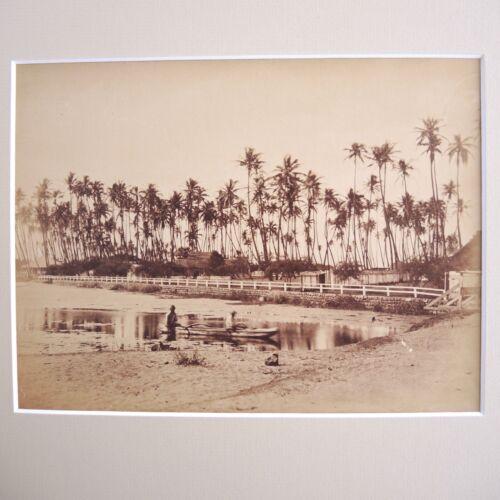 Antique Photograph 1878 Waikiki Beach Hawaii Helumoa House Royal Hawaiian Hotel