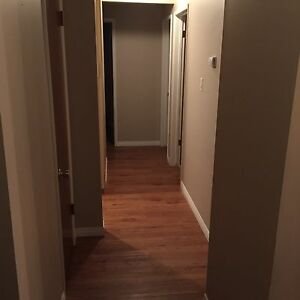 1.5 Bedroom near Northgate Mall Edmonton Edmonton Area image 2