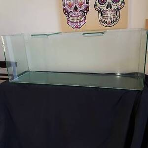 4ft Oversized Fish Tank + Fish Stand & Fish Sandy Bay Hobart City Preview