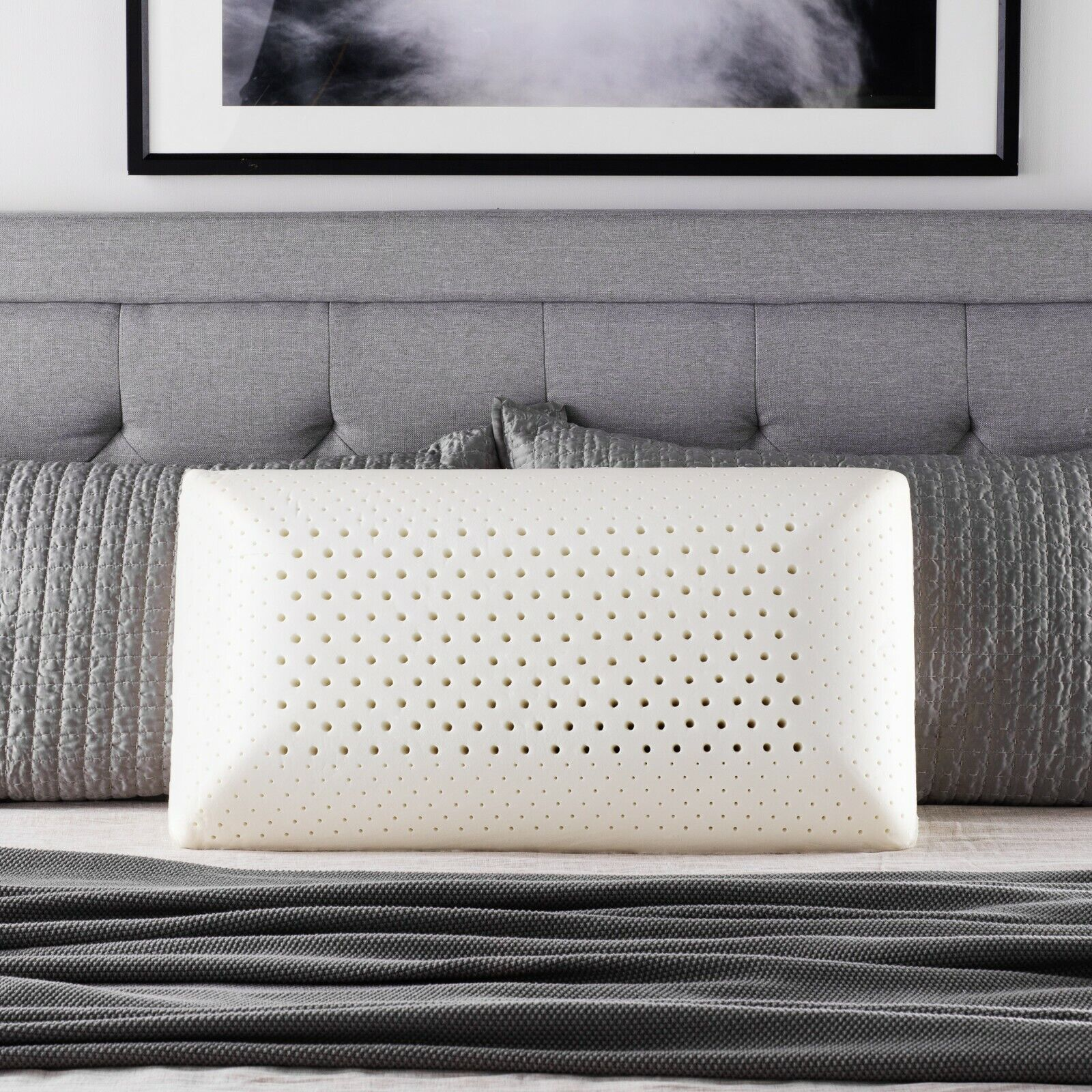 Z Shredded Latex Bed Pillow with 100/% Cotton Cover Returned in Damaged Package