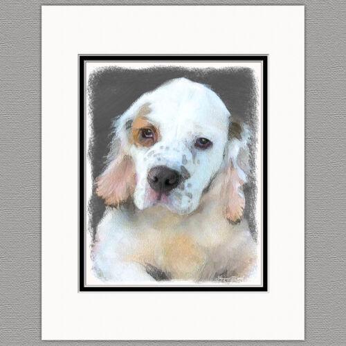 Clumber Spaniel Puppy Dog Original Art Print 8x10 Matted to 11x14