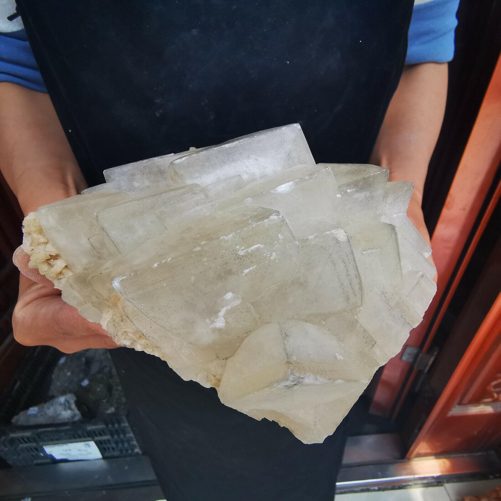 3.19LB Natural Pyrite Crystal Cluster Symbiosis Mineral Specimen Healing - $105.50