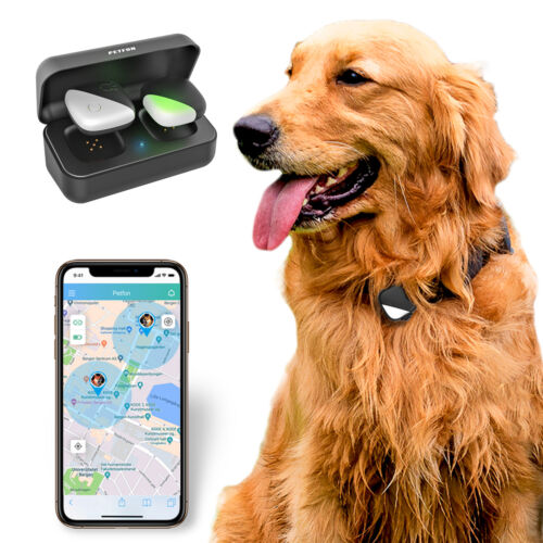 Pet GPS Tracker No Monthly Fee Real-Time Tracking Dogs Activity Monitor Collars - $46.00
