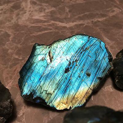 Natural Labradorite Crystal Rough - (1) Polished Faced Specimen - Large