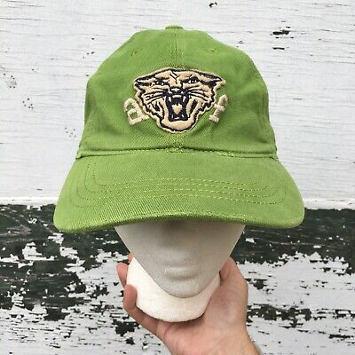 Abercrombie And Fitch Wildcats Cougar Hat Size Small/medium Green
