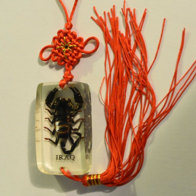 Scorpion In Arylic with Woven Lanyard Souvenir Iraq