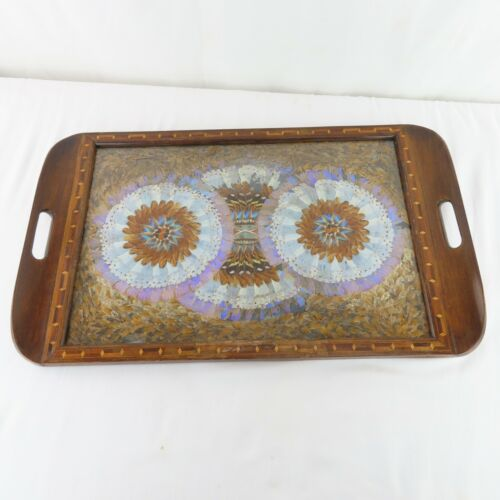 Vintage 1940s Brazilian Butterfly Tray Stunning iridescent Design Large Size
