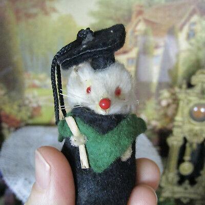 Vtg Puppenhaus Handmade Pelz Maus Puppe Deutschland Graduation Kostüm Mini - Pelz Mini Kostüm