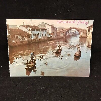 Vintage Post Card Cormorants Catching Fish Wuxi China