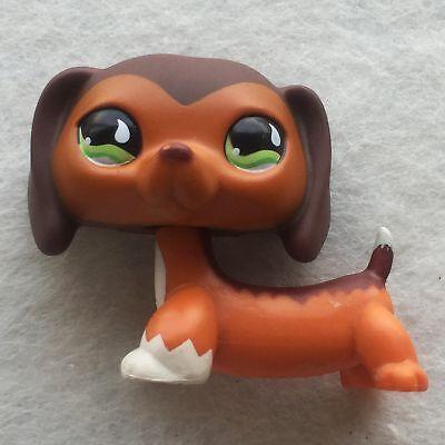 Littlest Pet Shop LPS Figure Loose Toy Brown Savanah Dachshund Dog #675