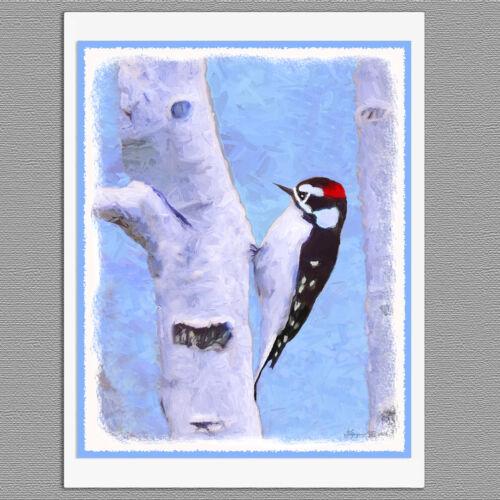6 Downy Woodpecker Wild Bird Blank Art Note Greeting Cards