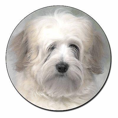 White Tibetan Terrier Dog Fridge Magnet Stocking Filler Christmas Gift, AD-TT1FM