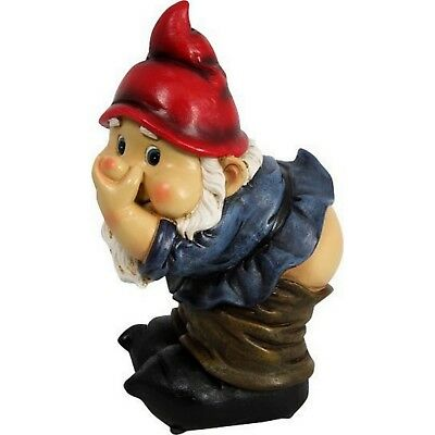 Garden Gnome Gnomes Statue Farting Fart Mooning Rude Resin Novelty Gift Home New ()