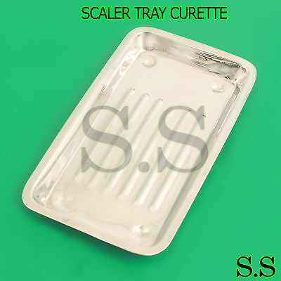 Scaler Tray Curettes Explorers Mirrors Probes Surgical Dental Instruments
