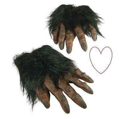 Halloween Kostüm Erwachsene Haarig Werwolf Monster Hände Klauen Handschuhe (Werwolf Hände Kostüm)