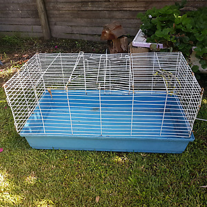 Free pet cage Windermere Park Lake Macquarie Area Preview