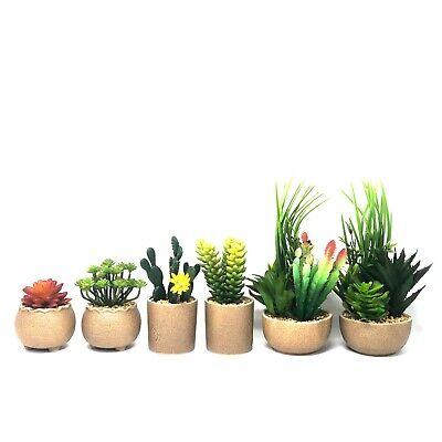 Allgala Small Desktop Artificial Succulent Plant with Natural Clay Pot - Artificial Succulent