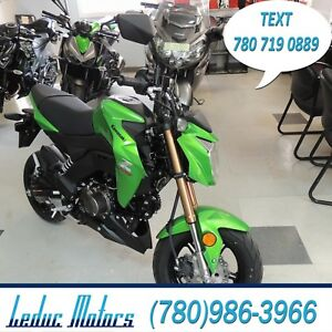 2017 Kawasaki Z125 PRO - AWESOME SMALL STREETFIGHTER BIKE