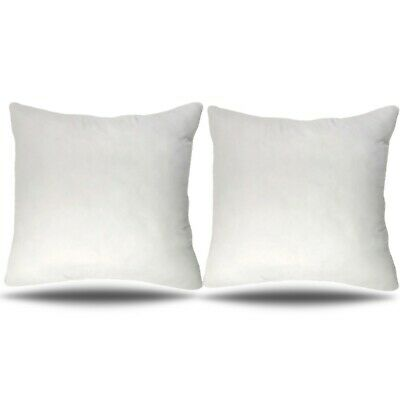 (Set of 2) 30x30 Pillow Insert Euro Sham Decorative Cushion Form Polyester 30 in ()