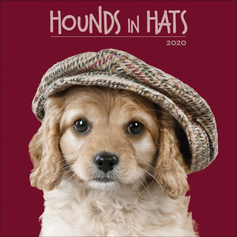 Hounds+in+Hats+2020+Official+Square+Wall+Calendar