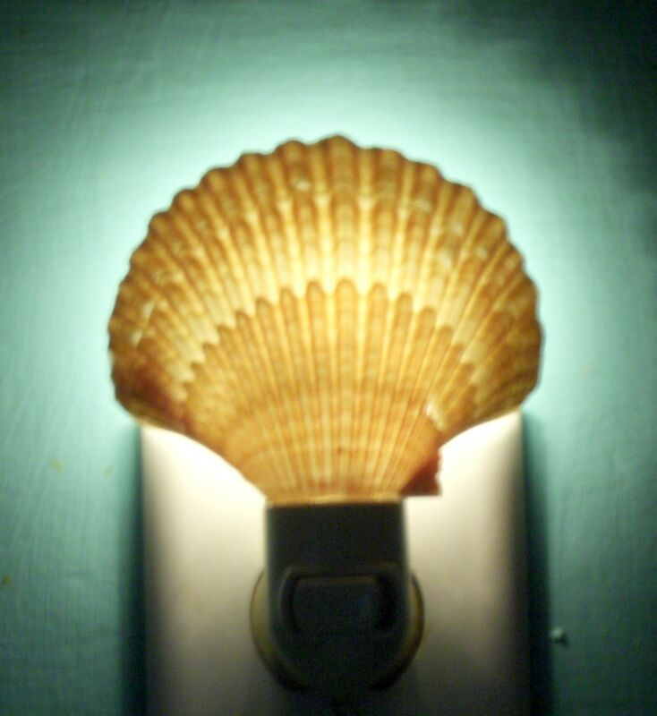 SEASHELL NIGHT LIGHT MEXICAN DEEP SCALLOP  DECOR CRAFT REEF NAUTICAL  BEACH