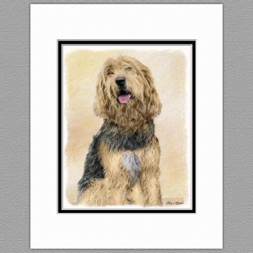 Otterhound Dog Original Art Print 8x10 Matted to 11x14