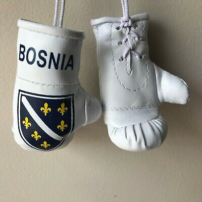 Flag Boxing Gloves - BOSNIA flag Mini Boxing Gloves for Car Truck Bus Jeep SUV RV Decor Rear-View Mir
