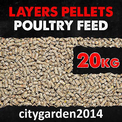 20kg Layer Pellets Balanced Nutrition for Healthy Laying Poultry 16% Protein