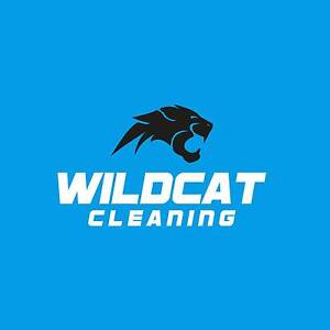 Wildcat cleaning Bundall Gold Coast City Preview