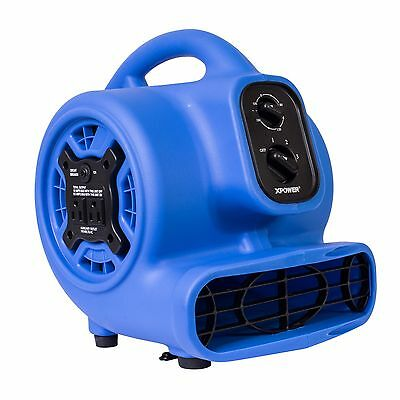 Xpower P-230at 15 Hp Mini Air Mover Carpet Dryer Fan Blower - Purple Blue