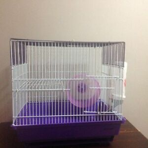 As new mouse cage complete with accessories Carrara Gold Coast City Preview