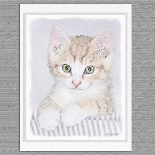 6 Yellow Tabby Kitten Cat Blank Art Note Greeting Cards