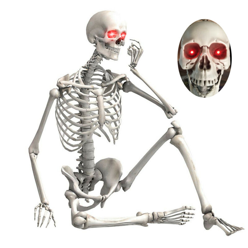 5.6FT Halloween Life Size Skeleton Human Body Poseable Props Party House Decor