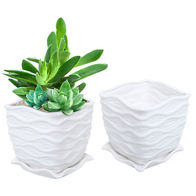 Planting Design (White Ceramic Wave Textured Design Flower Planting Pot / Succulent Planter)
