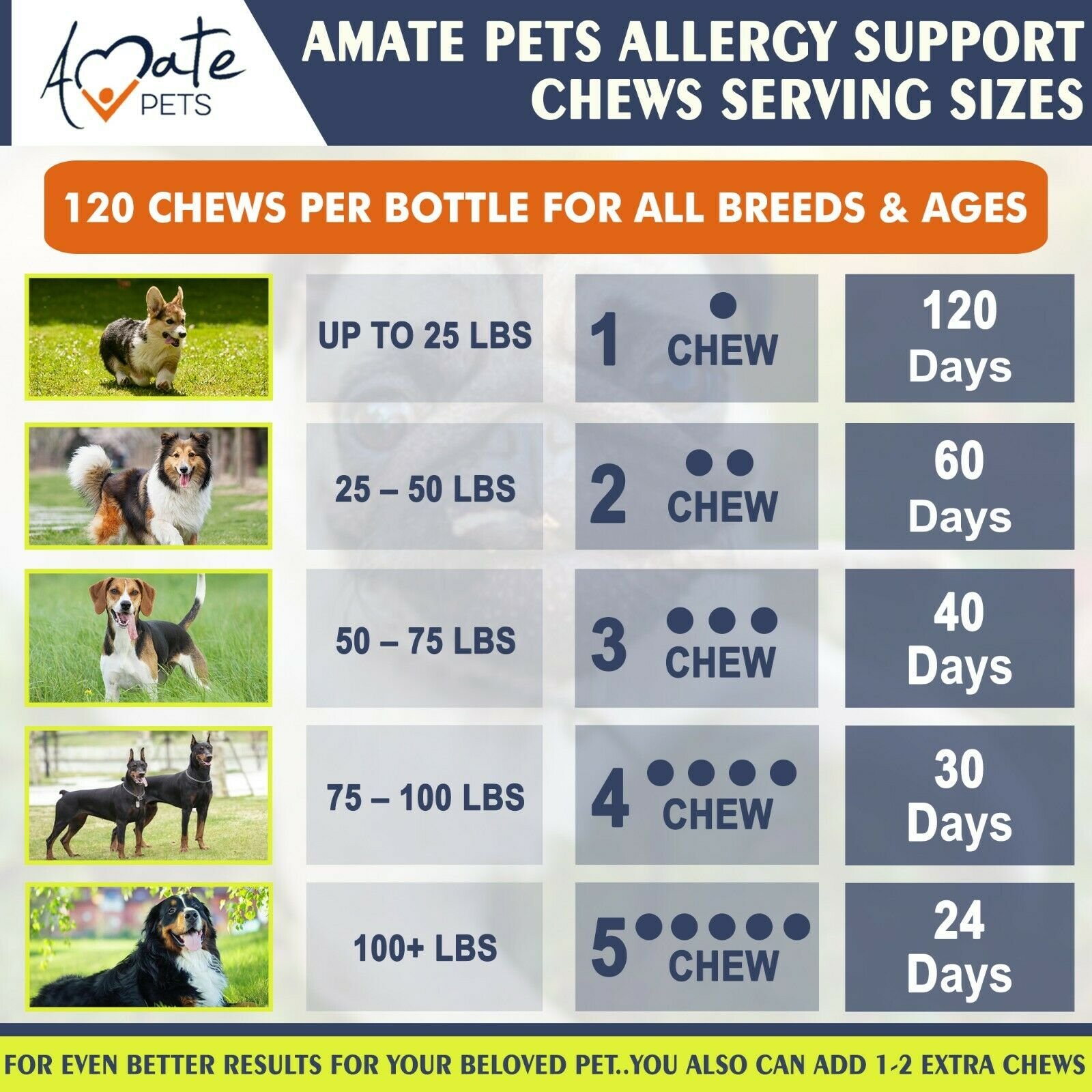 Allergy Relief Immune Supplement for Dogs - Itching Skin Relief Amate Pets 3