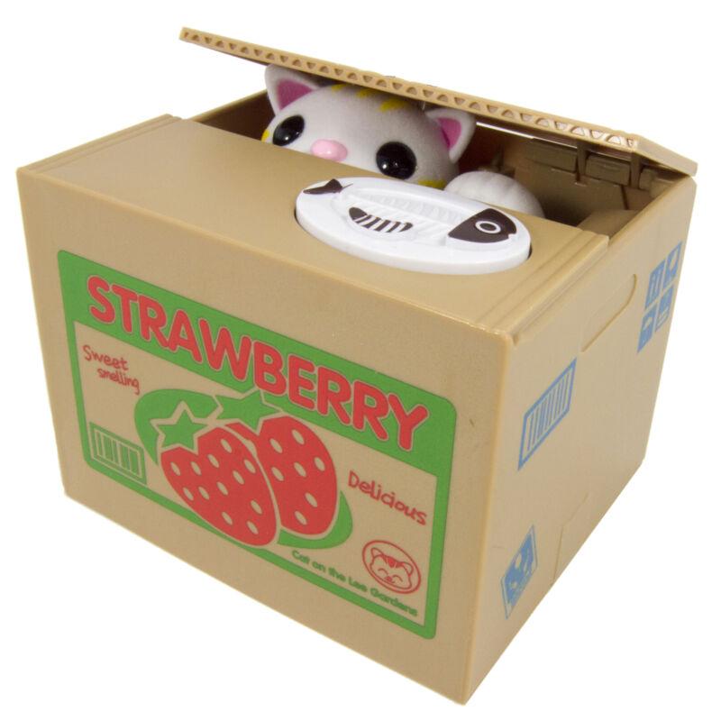 Cute Cat In A Box Piggy Bank