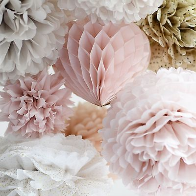 Dusty blush and champagne tissue paper pom poms & honeycomb