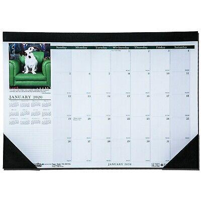 2020 1996 HOD1996 Earthscapes Puppies Desk Pad Calendar, 13 x 18-1/2
